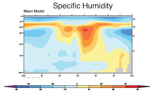 specific humidity model error